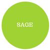 Red Bug Culture DIY Donnerstag: Archetypen: SAGE