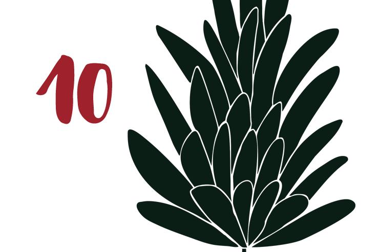 Red Bug Culture Adventskalender 2019 - TAG 10