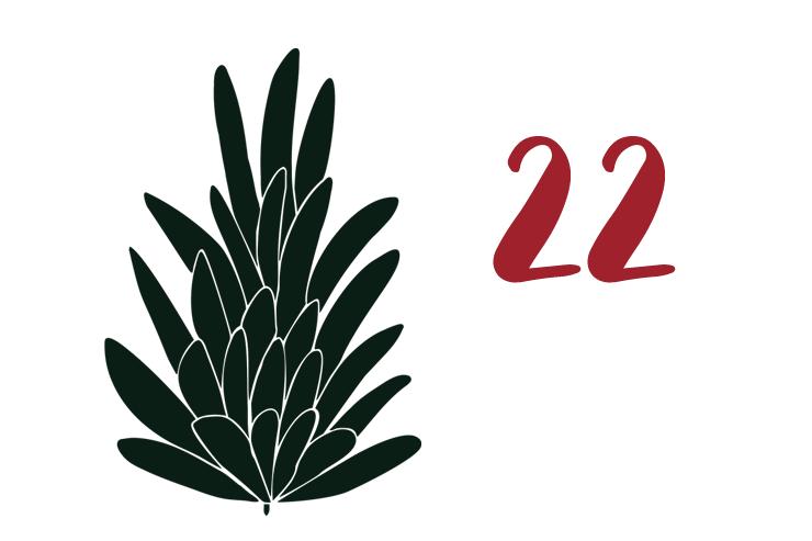 Red Bug Culture Adventskalender 2019 - TAG 22