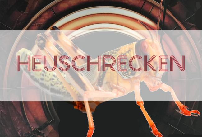 Heuschrecken Podcast